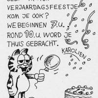 Dieren Garfield katachtige