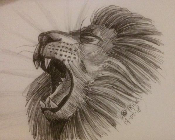 Dieren realistisch katachtige Lion